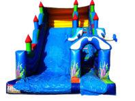 Dolphin Slide  For Pool